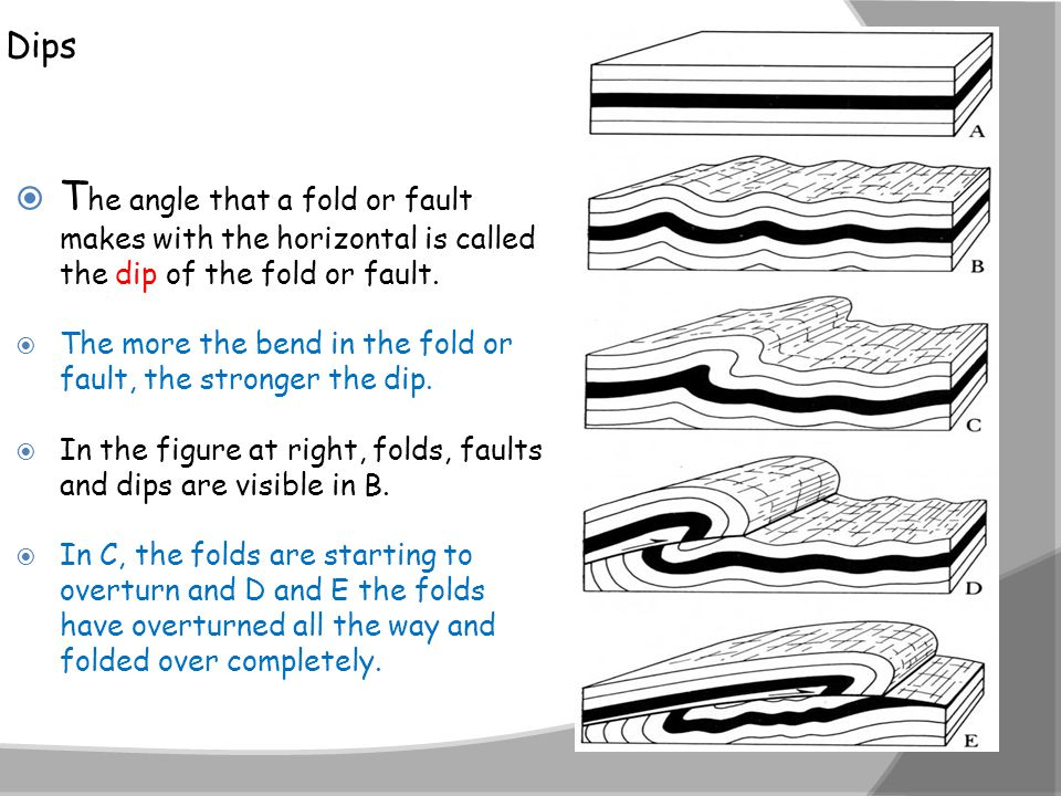 Dips  T he angle that a fold or fault makes with the horizontal is called the dip of the fold or fault.  The more the bend in the fold or fault, the