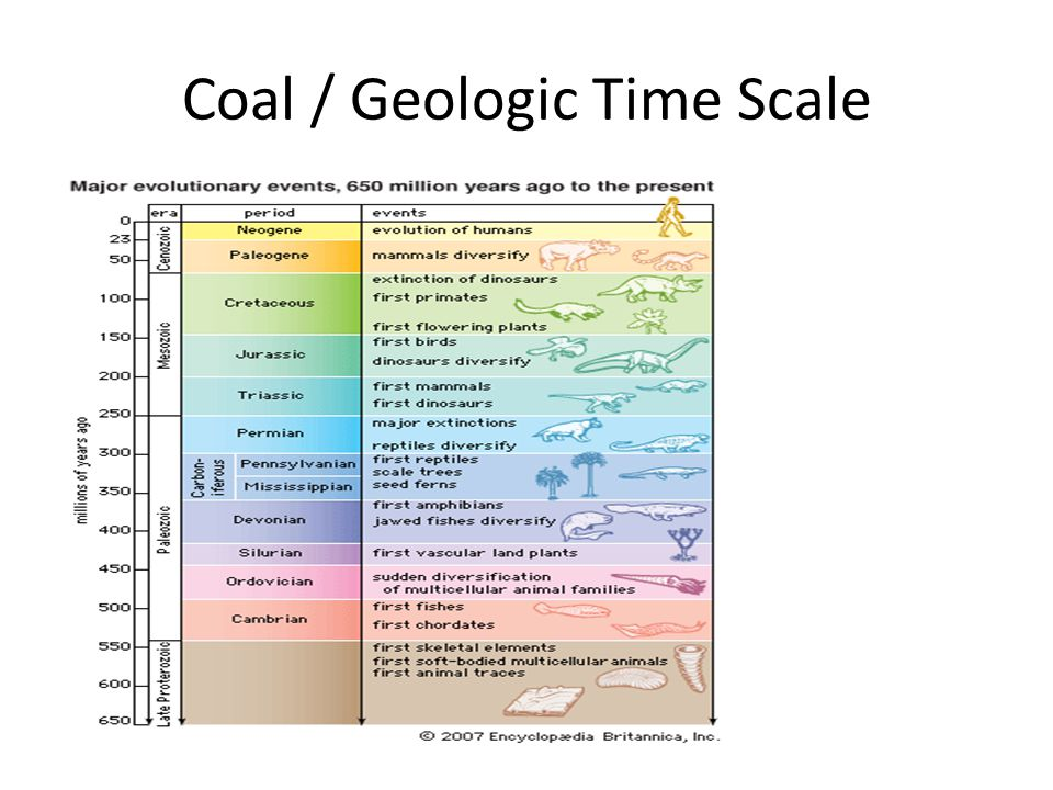Coal / Geologic Time Scale