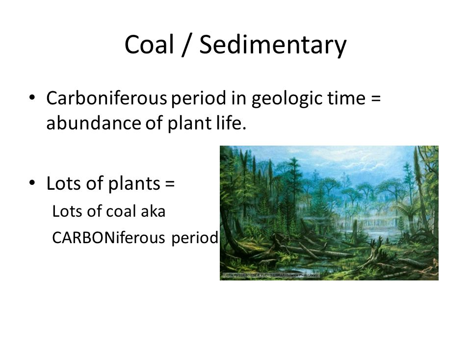 Coal / Sedimentary Carboniferous period in geologic time = abundance of plant life.