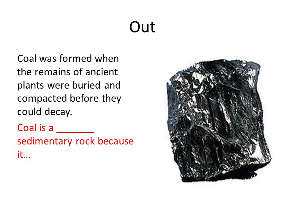 Out Coal was formed when the remains of ancient plants were buried and compacted before they could decay. Coal is a _______ sedimentary rock because i