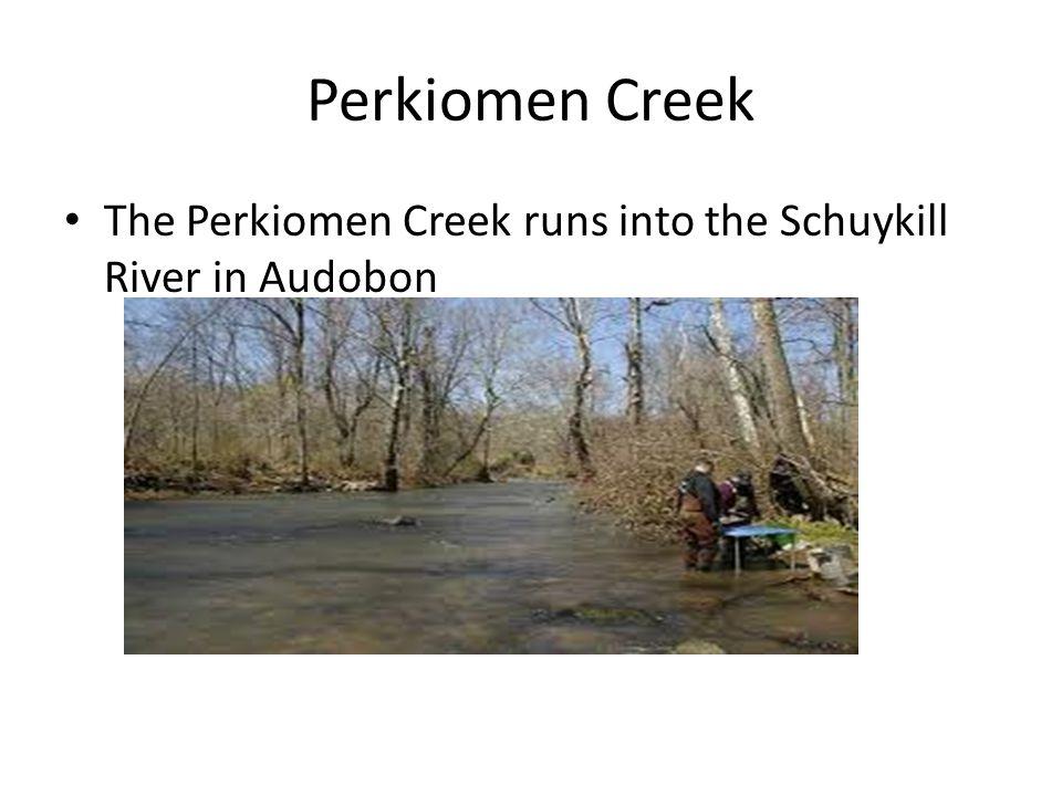 Perkiomen Creek The Perkiomen Creek runs into the Schuykill River in Audobon