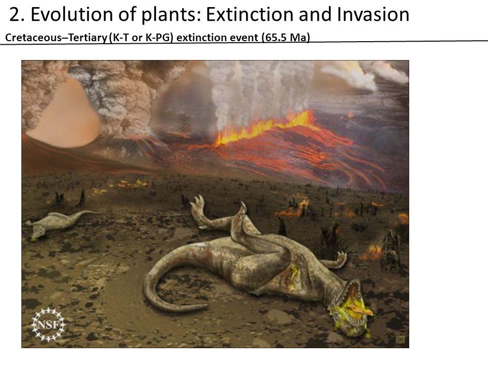 Cretaceous–Tertiary (K-T or K-PG) extinction event (65.5 Ma) 2.