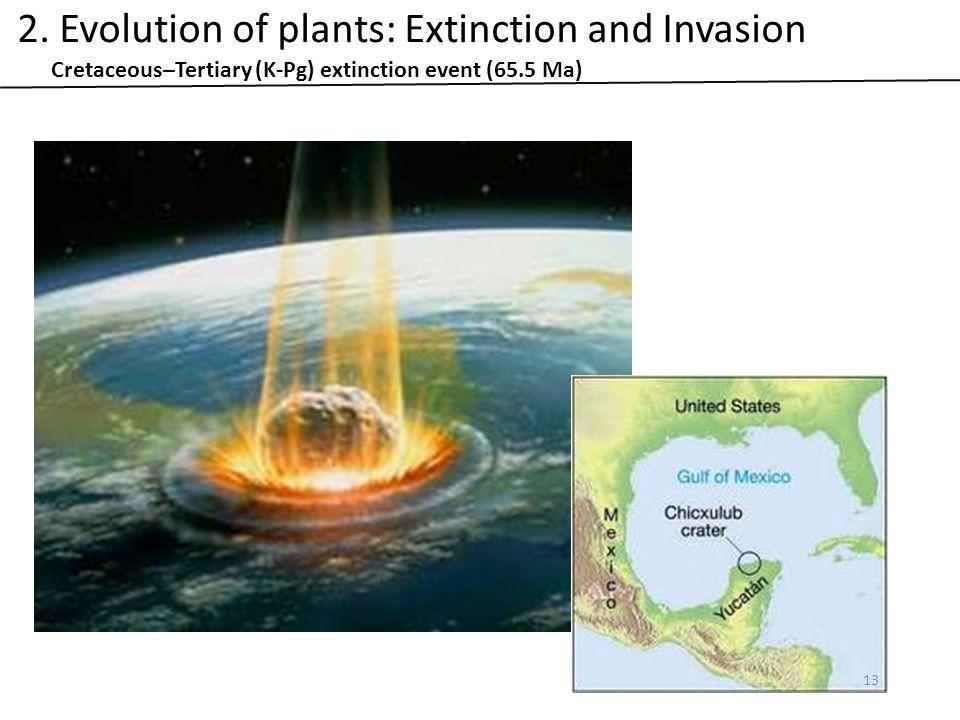 Cretaceous–Tertiary (K-Pg) extinction event (65.5 Ma) 13 2.