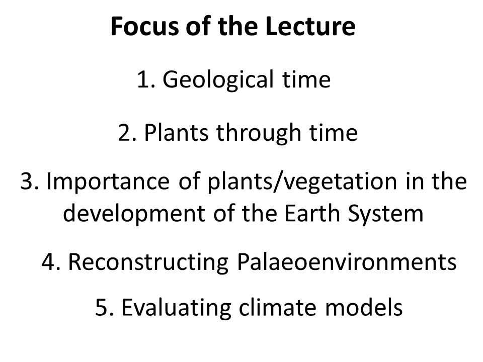Focus of the Lecture 1. Geological time 2. Plants through time 3. Importance of plants/vegetation in the development of the Earth System 4. Reconstruc