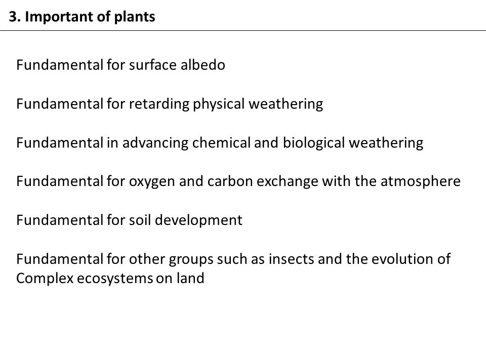 3. Important of plants Fundamental for surface albedo Fundamental for retarding physical weathering Fundamental in advancing chemical and biological w