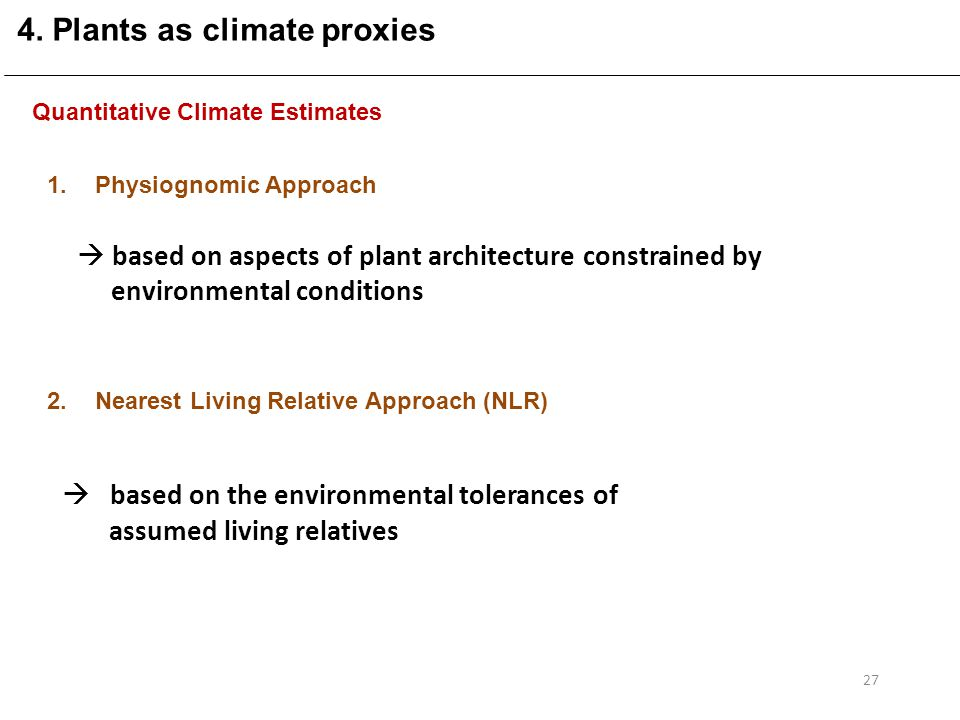 Quantitative Climate Estimates 1.Physiognomic Approach 2.Nearest Living Relative Approach (NLR)  based on aspects of plant architecture constrained by environmental conditions  based on the environmental tolerances of assumed living relatives 27 4.