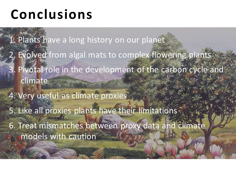 Conclusions 1. Plants have a long history on our planet 2. Evolved from algal mats to complex flowering plants 3. Pivotal role in the development of t