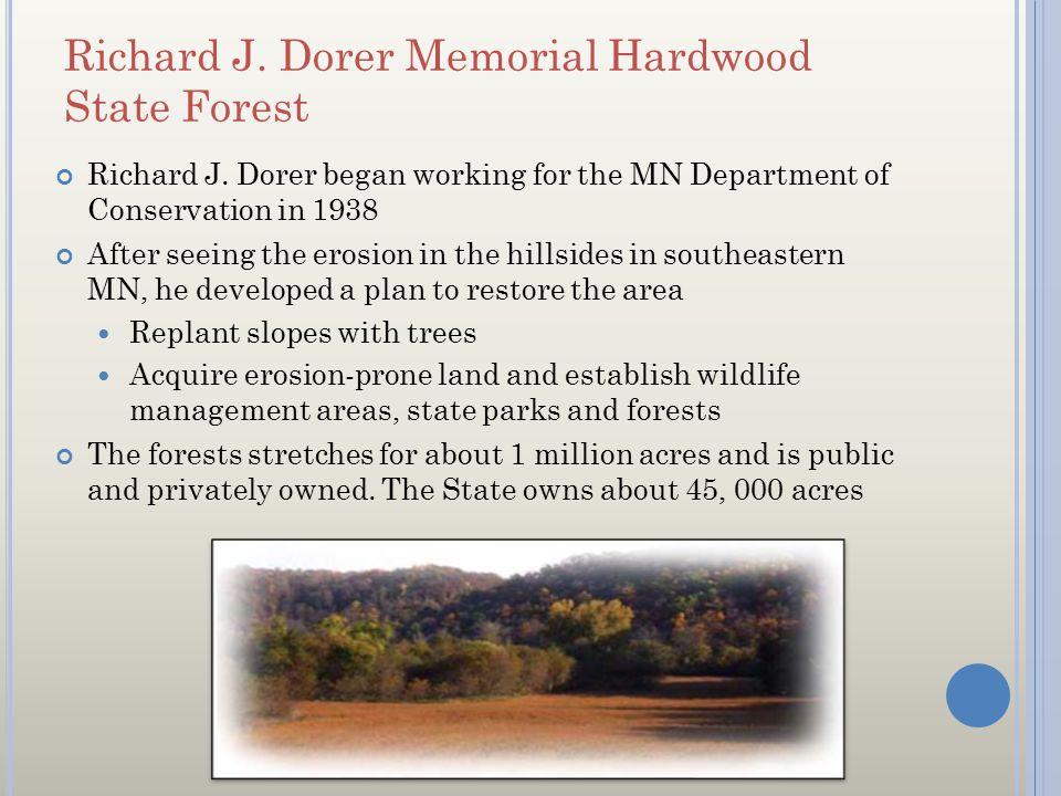 Richard J. Dorer Memorial Hardwood State Forest Richard J. Dorer began working for the MN Department of Conservation in 1938 After seeing the erosion