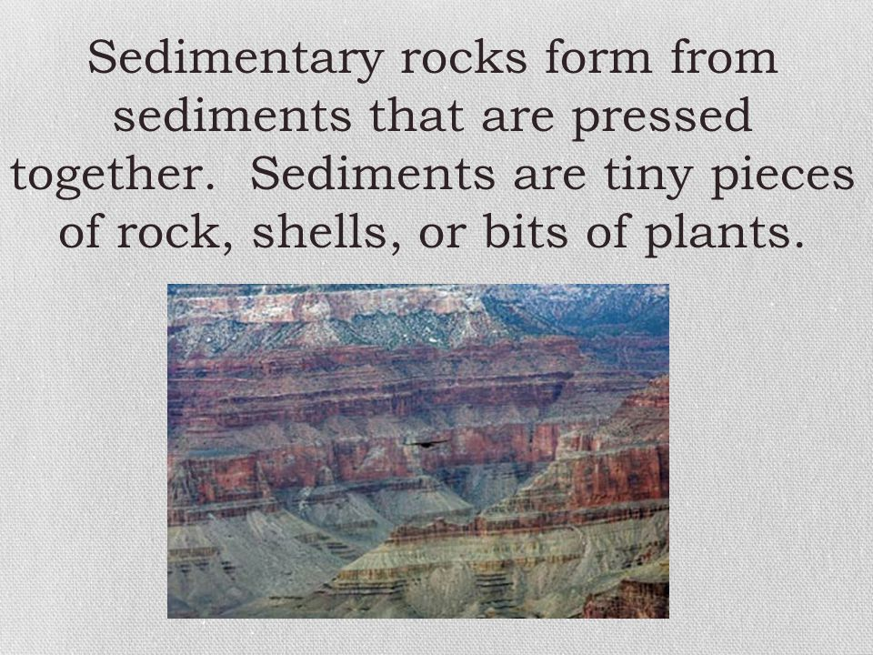 Sedimentary rocks form from sediments that are pressed together. Sediments are tiny pieces of rock, shells, or bits of plants.