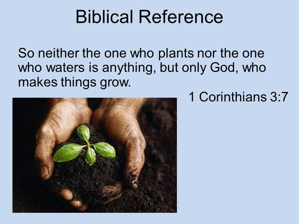 Biblical Reference So neither the one who plants nor the one who waters is anything, but only God, who makes things grow.