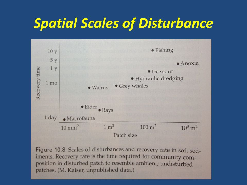 Spatial Scales of Disturbance