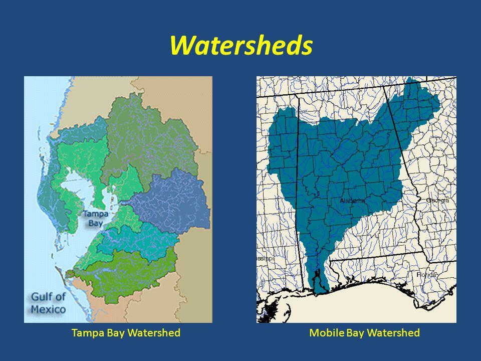 Watersheds Tampa Bay WatershedMobile Bay Watershed
