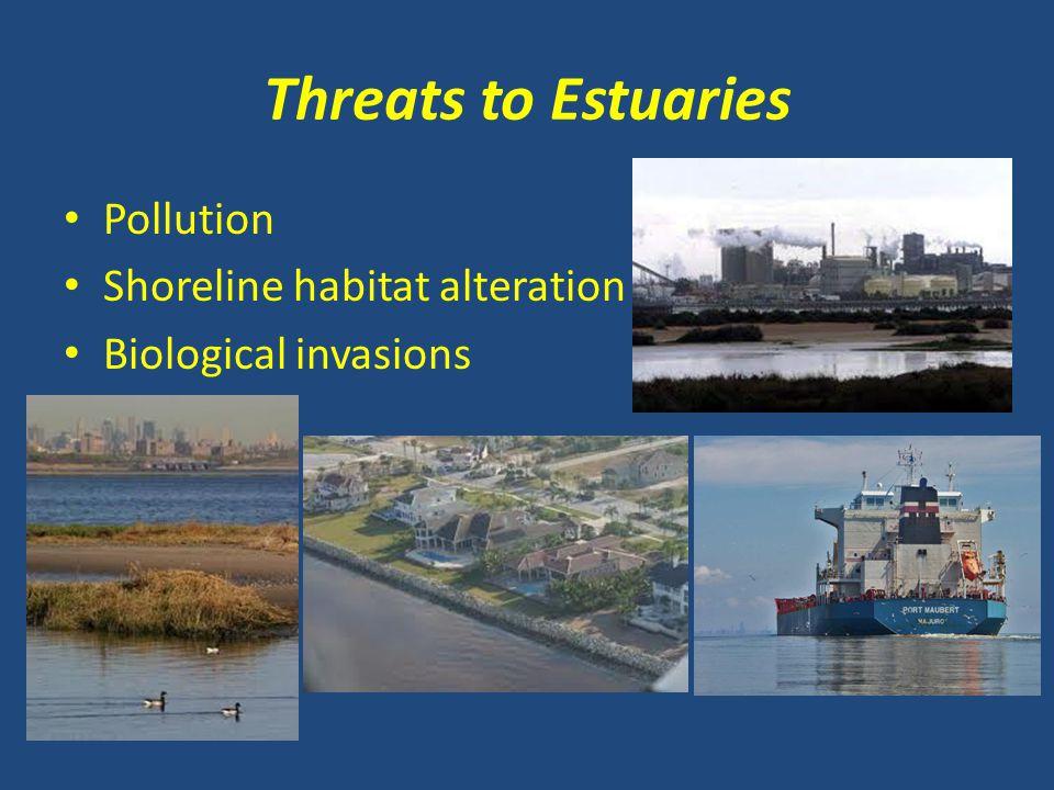 Threats to Estuaries Pollution Shoreline habitat alteration Biological invasions