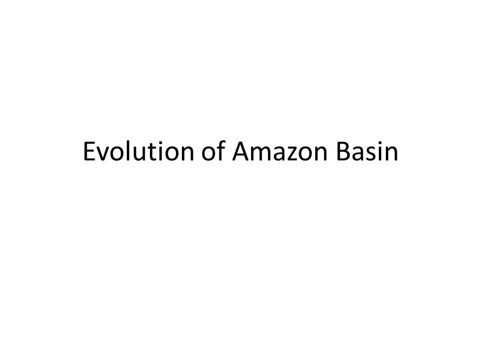 Evolution of Amazon Basin