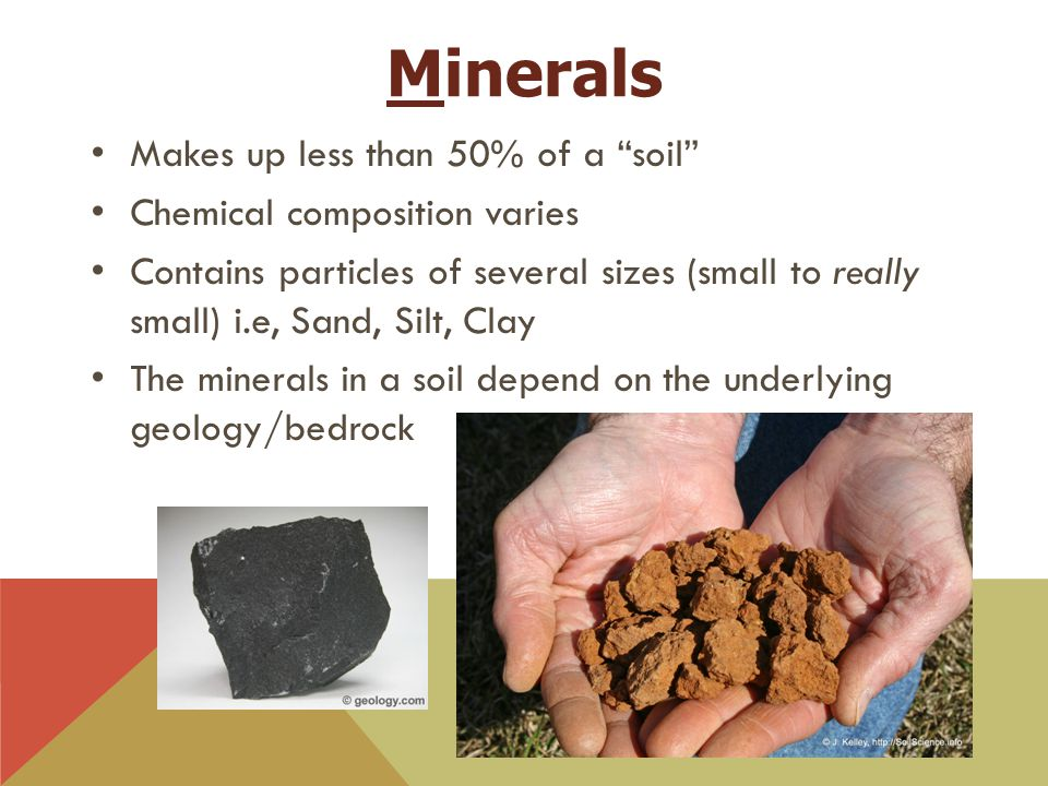 """Minerals Makes up less than 50% of a """"soil"""" Chemical composition varies Contains particles of several sizes (small to really small) i.e, Sand, Silt, C"""