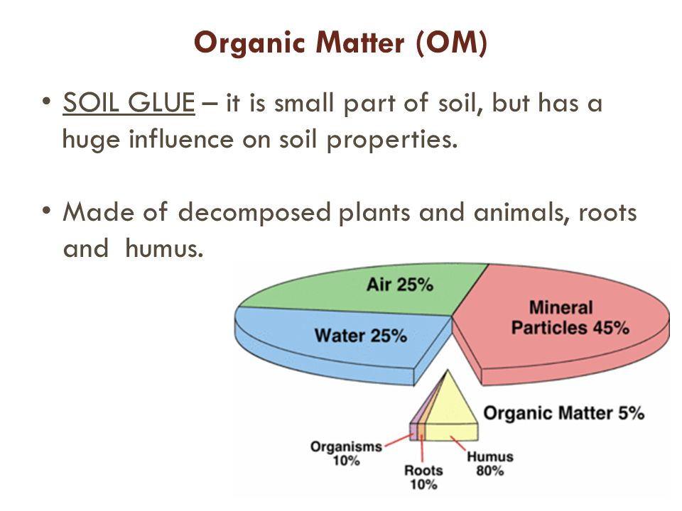 Organic Matter (OM) SOIL GLUE – it is small part of soil, but has a huge influence on soil properties.