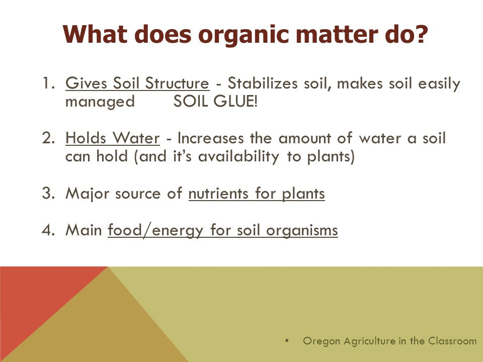 What does organic matter do? 1.Gives Soil Structure - Stabilizes soil, makes soil easily managed SOIL GLUE! 2.Holds Water - Increases the amount of wa