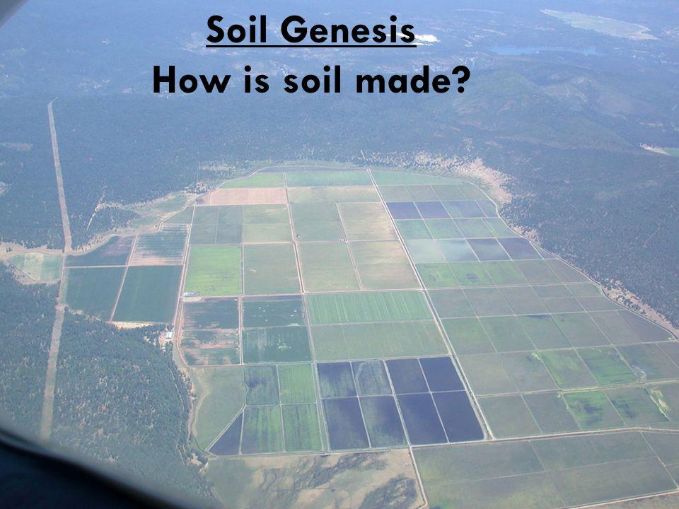 Soil Genesis How is soil made?