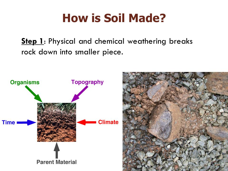 Step 1: Physical and chemical weathering breaks rock down into smaller piece. How is Soil Made?