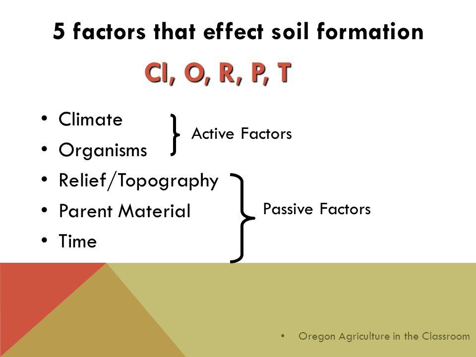 5 factors that effect soil formation Climate Organisms Relief/Topography Parent Material Time Active Factors Passive Factors Cl, O, R, P, T Oregon Agr