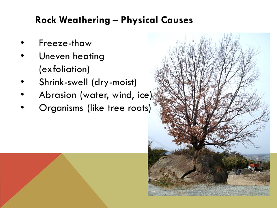 Freeze-thaw Uneven heating (exfoliation) Shrink-swell (dry-moist) Abrasion (water, wind, ice) Organisms (like tree roots) Rock Weathering – Physical Causes