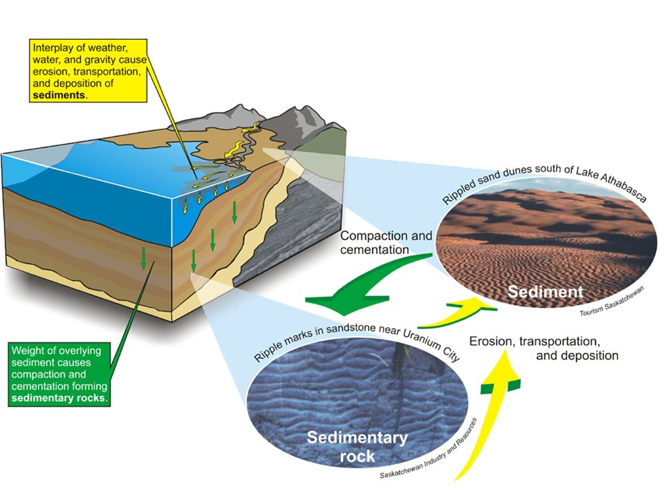 3 types of Sedimentary Rock: – CLASTIC- form from rock fragments weathered and eroded by glaciers, wind, rivers, and waves.