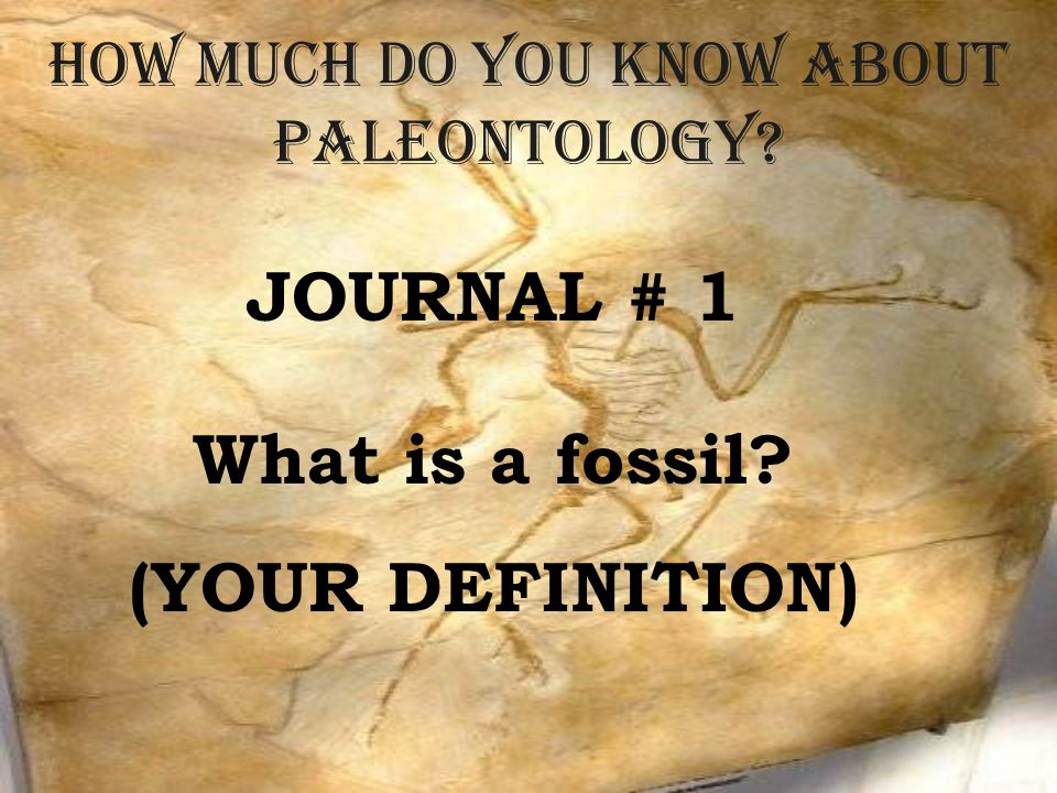 How much do you know about Paleontology? JOURNAL # 1 What is a fossil? (YOUR DEFINITION)
