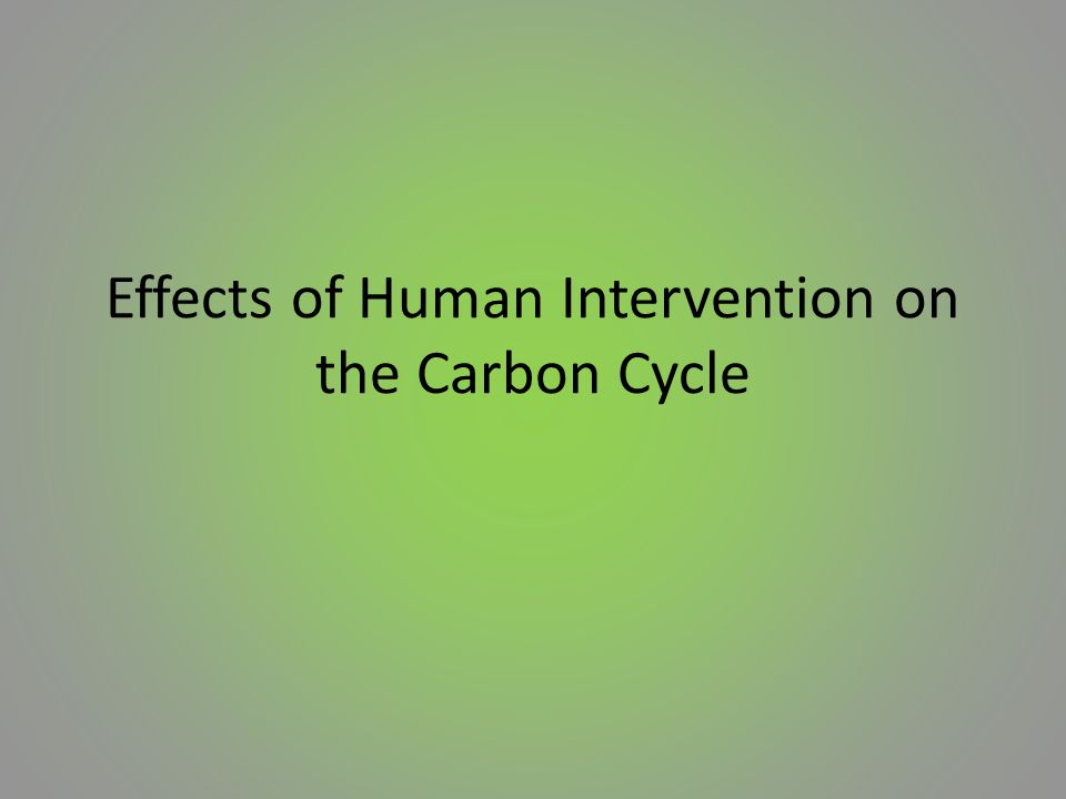 Effects of Human Intervention on the Carbon Cycle