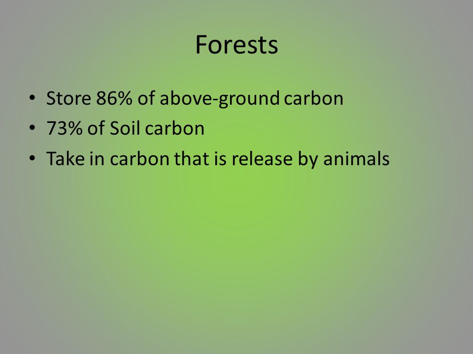 Forests Store 86% of above-ground carbon 73% of Soil carbon Take in carbon that is release by animals
