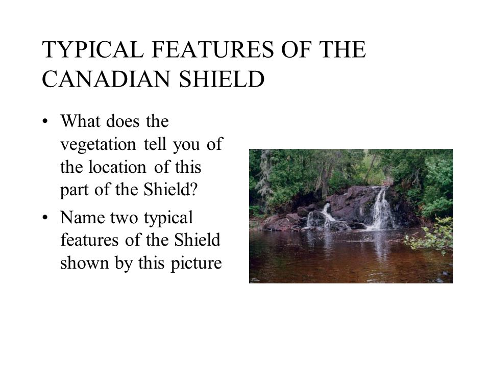 TYPICAL FEATURES OF THE CANADIAN SHIELD What does the vegetation tell you of the location of this part of the Shield? Name two typical features of the