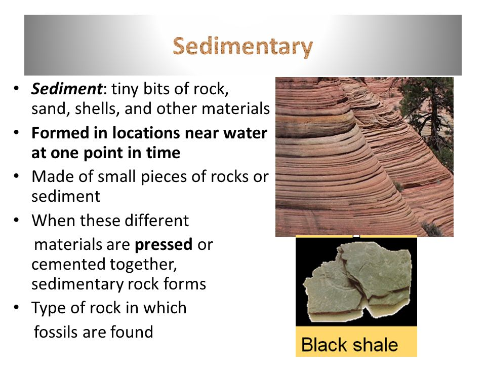 Sediment: tiny bits of rock, sand, shells, and other materials Formed in locations near water at one point in time Made of small pieces of rocks or sediment When these different materials are pressed or cemented together, sedimentary rock forms Type of rock in which fossils are found