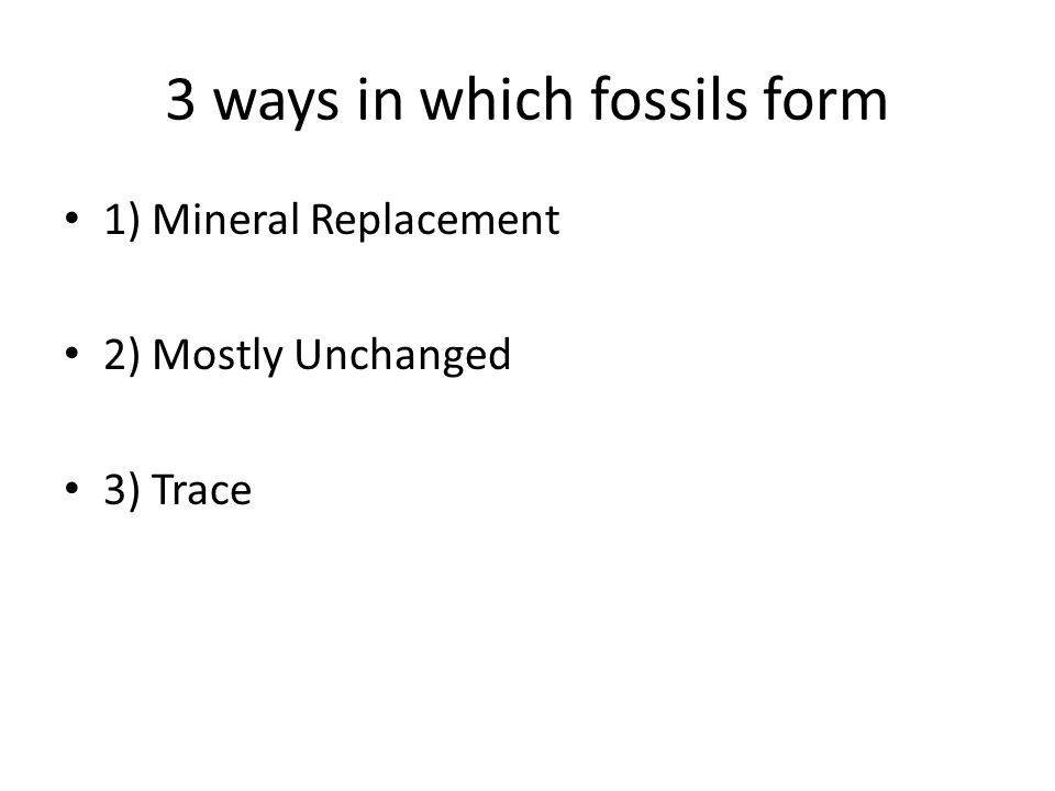 3 ways in which fossils form 1) Mineral Replacement 2) Mostly Unchanged 3) Trace
