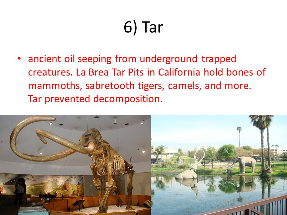 6) Tar ancient oil seeping from underground trapped creatures.