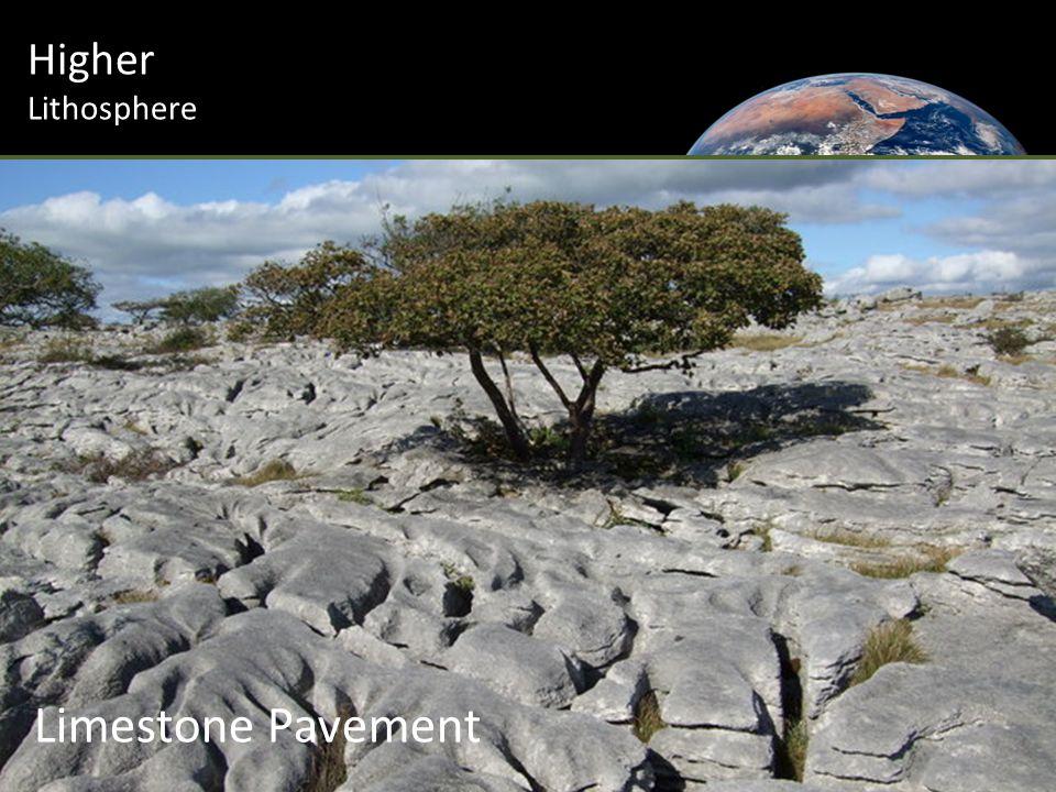 Higher Lithosphere Limestone Pavement