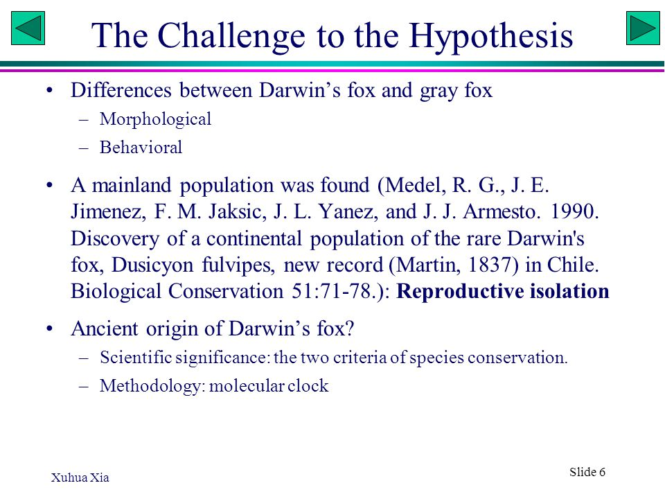 Xuhua Xia Slide 6 The Challenge to the Hypothesis Differences between Darwin's fox and gray fox –Morphological –Behavioral A mainland population was f