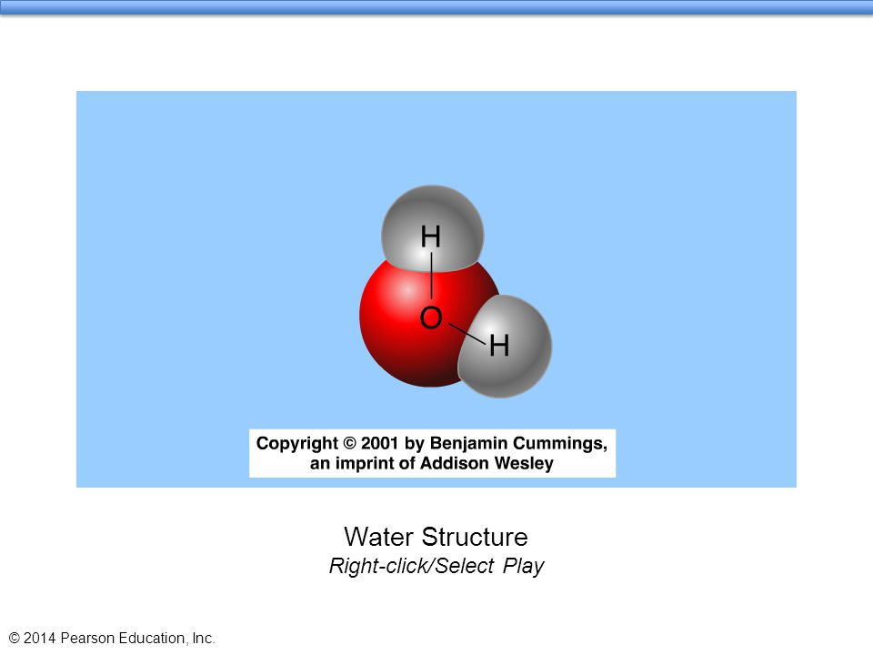 Water Structure Right-click/Select Play