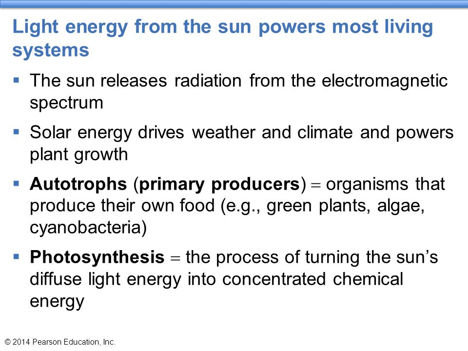 Light energy from the sun powers most living systems  The sun releases radiation from the electromagnetic spectrum  Solar energy drives weather and