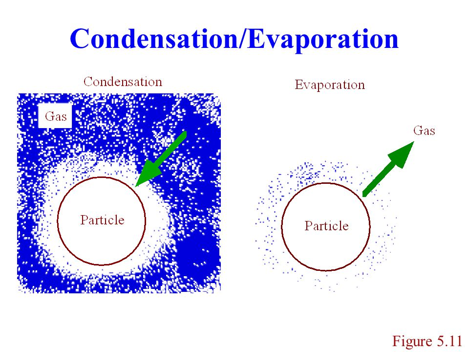 Condensing Gases Condensation occurs primarily on accumulation mode since it contains the largest surface area concentration of all modes.
