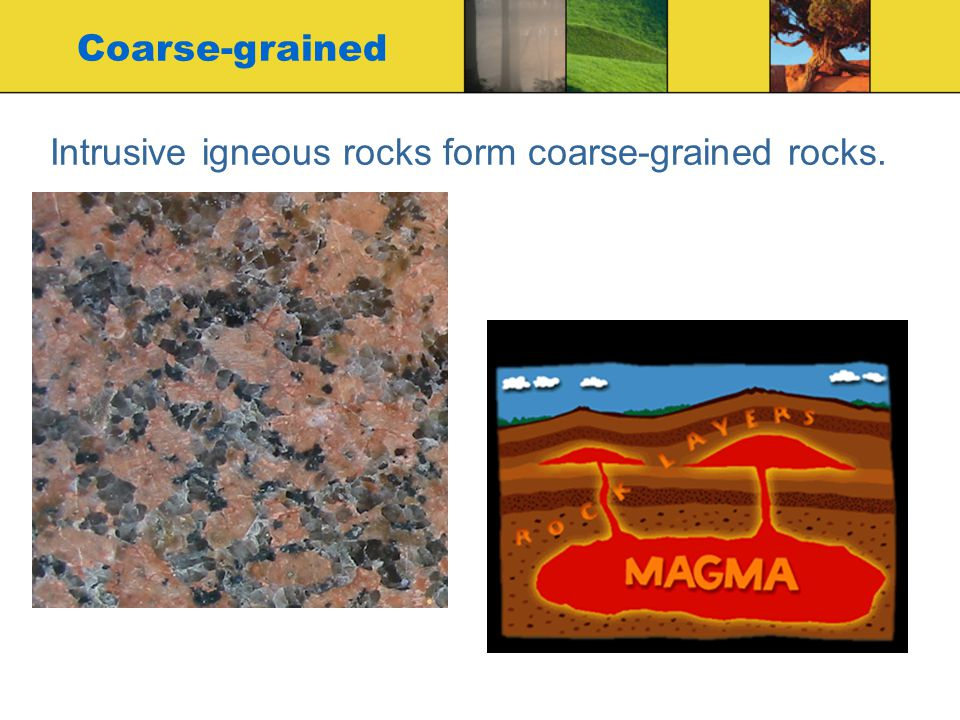 Intrusive igneous rocks form coarse-grained rocks. Coarse-grained