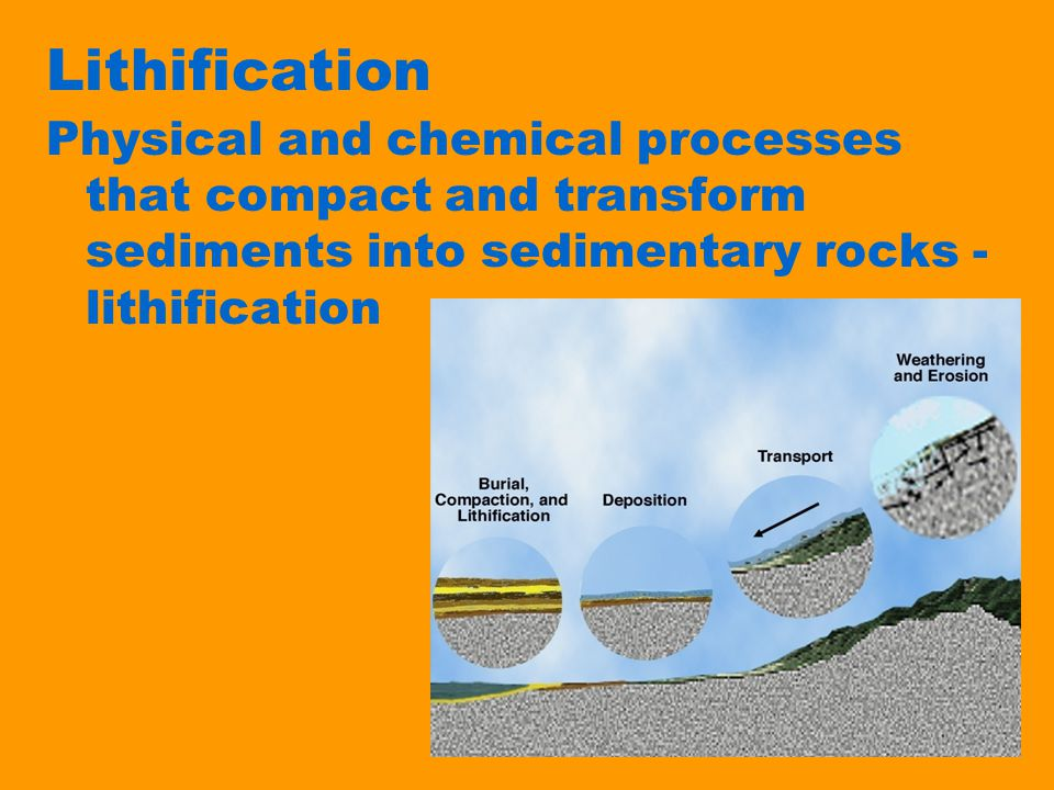 Lithification Physical and chemical processes that compact and transform sediments into sedimentary rocks - lithification
