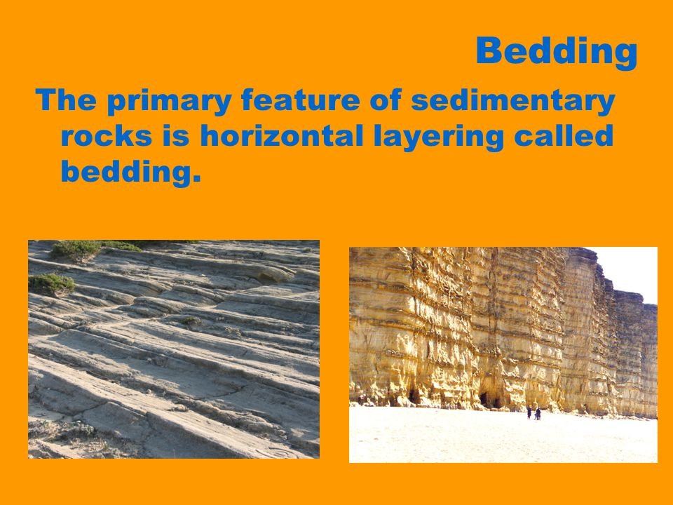Bedding The primary feature of sedimentary rocks is horizontal layering called bedding.