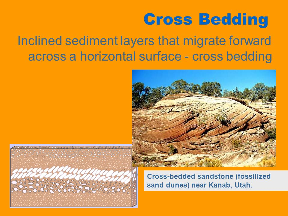 Cross Bedding Inclined sediment layers that migrate forward across a horizontal surface - cross bedding Cross-bedded sandstone (fossilized sand dunes)