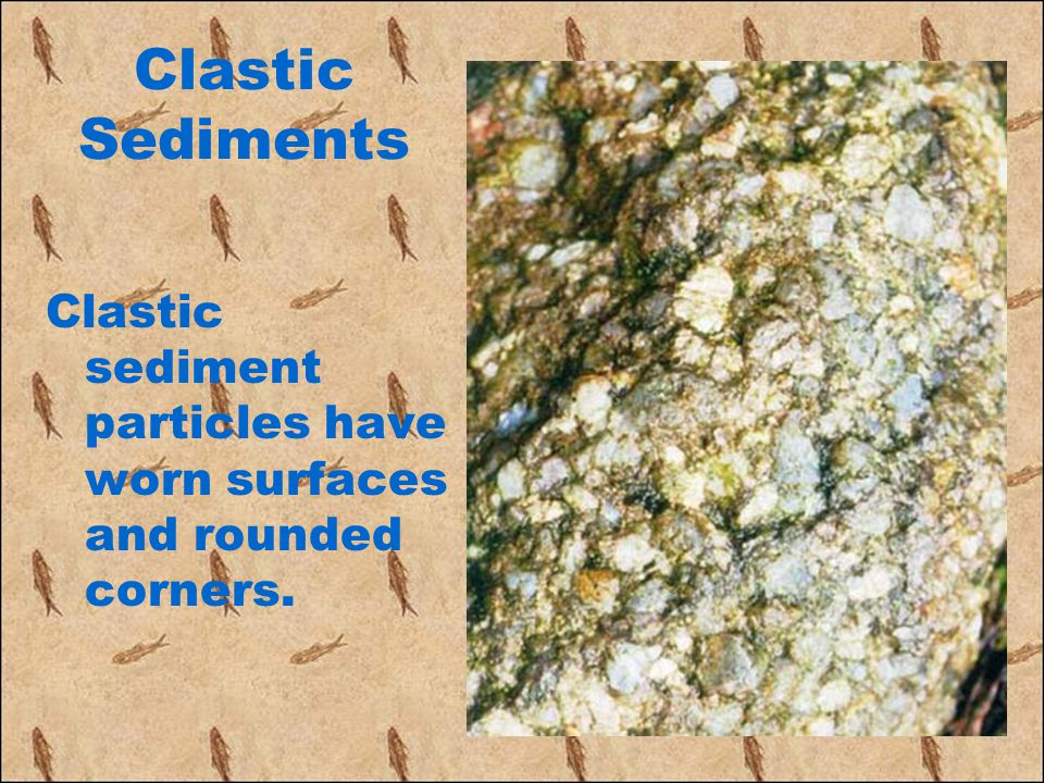 Clastic Sediments Clastic sediment particles have worn surfaces and rounded corners.