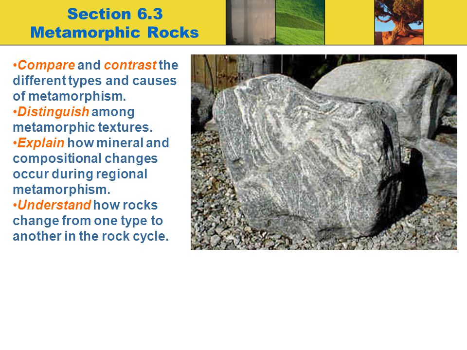 Section 6.3 Metamorphic Rocks Compare and contrast the different types and causes of metamorphism. Distinguish among metamorphic textures. Explain how