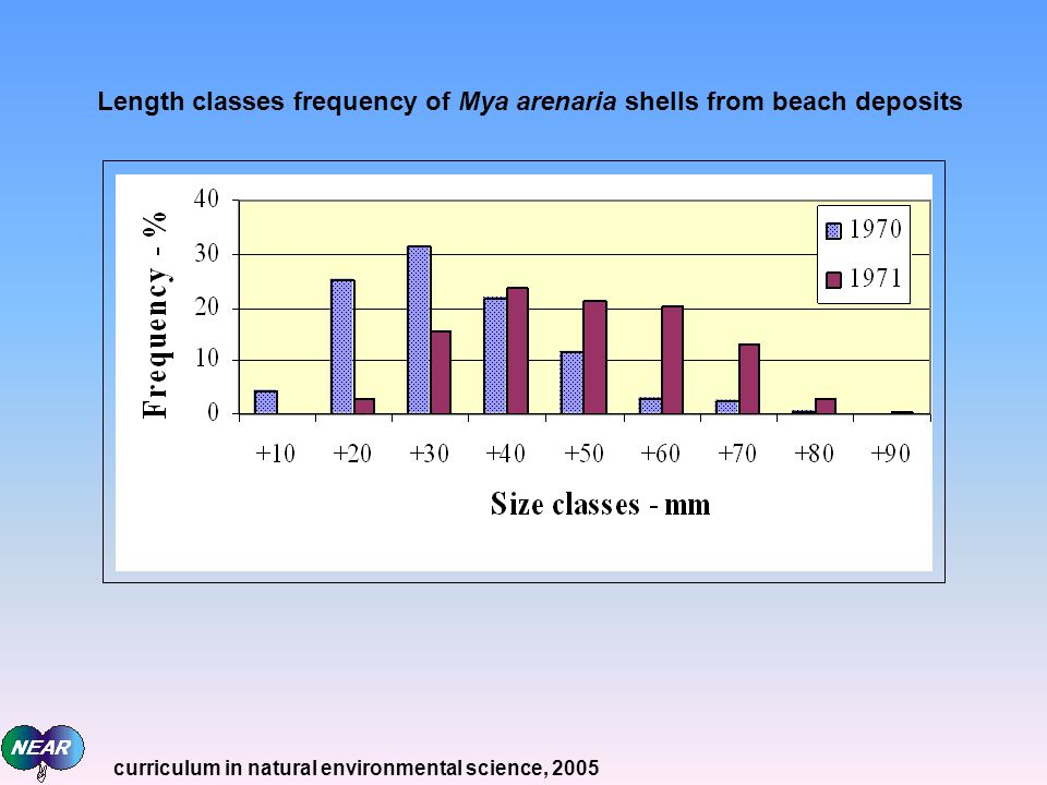 Length classes frequency of Mya arenaria shells from beach deposits curriculum in natural environmental science, 2005