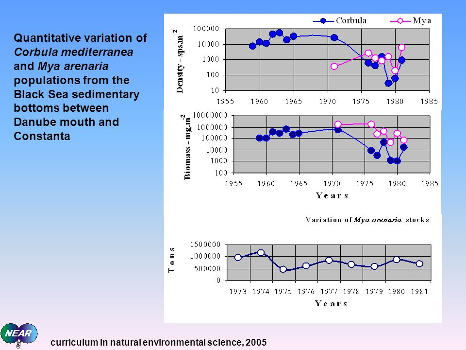 Quantitative variation of Corbula mediterranea and Mya arenaria populations from the Black Sea sedimentary bottoms between Danube mouth and Constanta curriculum in natural environmental science, 2005