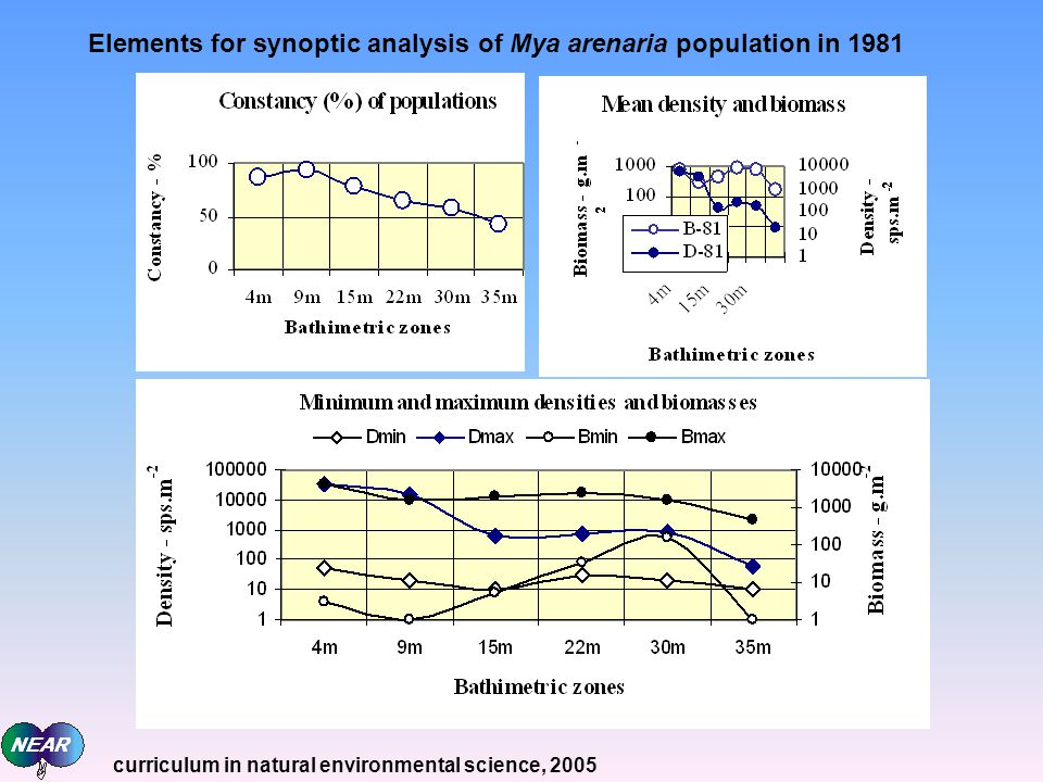 Elements for synoptic analysis of Mya arenaria population in 1981 curriculum in natural environmental science, 2005