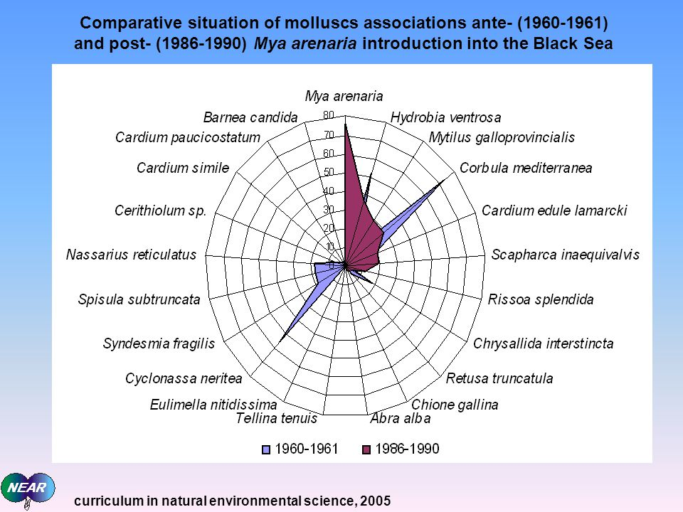 Comparative situation of molluscs associations ante- (1960-1961) and post- (1986-1990) Mya arenaria introduction into the Black Sea curriculum in natural environmental science, 2005