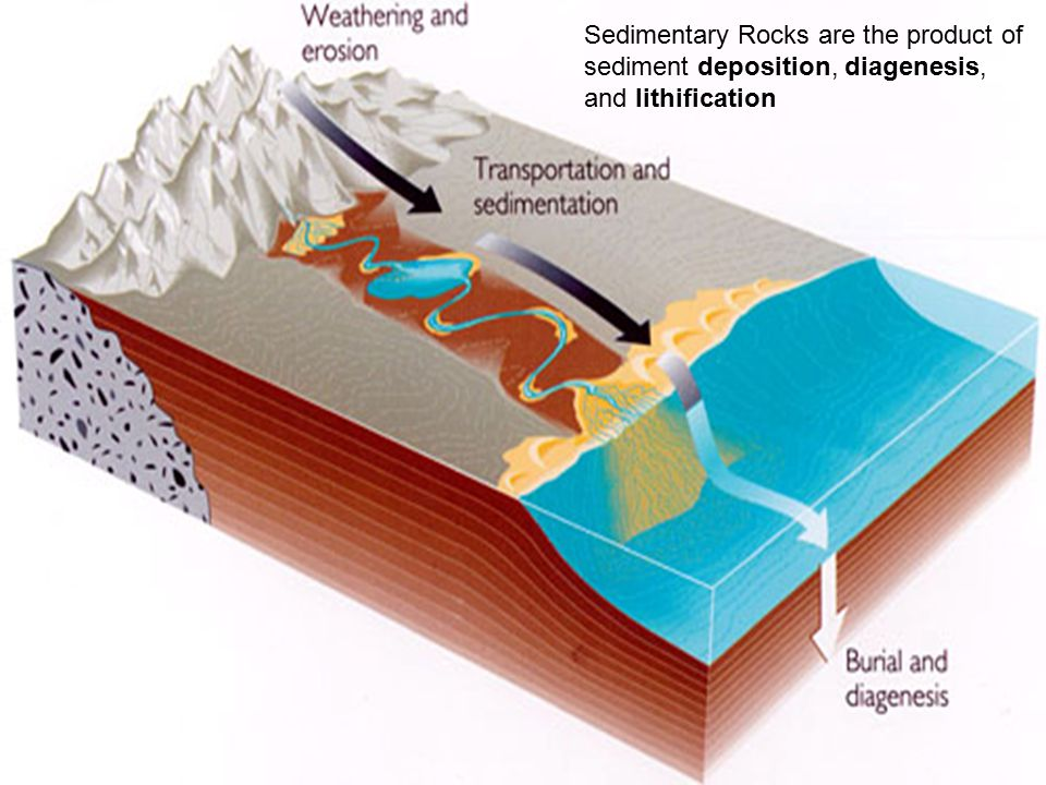 Sedimentary Rocks are the product of sediment deposition, diagenesis, and lithification