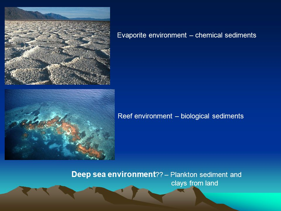 Evaporite environment – chemical sediments Reef environment – biological sediments Deep sea environment .